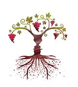 Vinibee, les vins libres